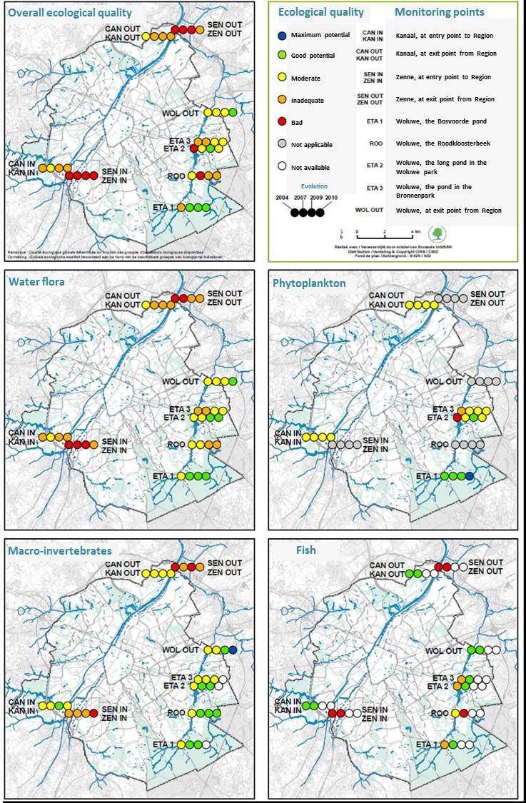 Ecological quality of the most important Brussels waterways and ponds of the Woluwe (2004-2007-2009-2010): overall evaluation and evaluation per group of bio-indicators