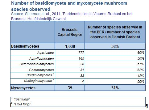 Number of basidiomycete and myxomycete mushroom species observed